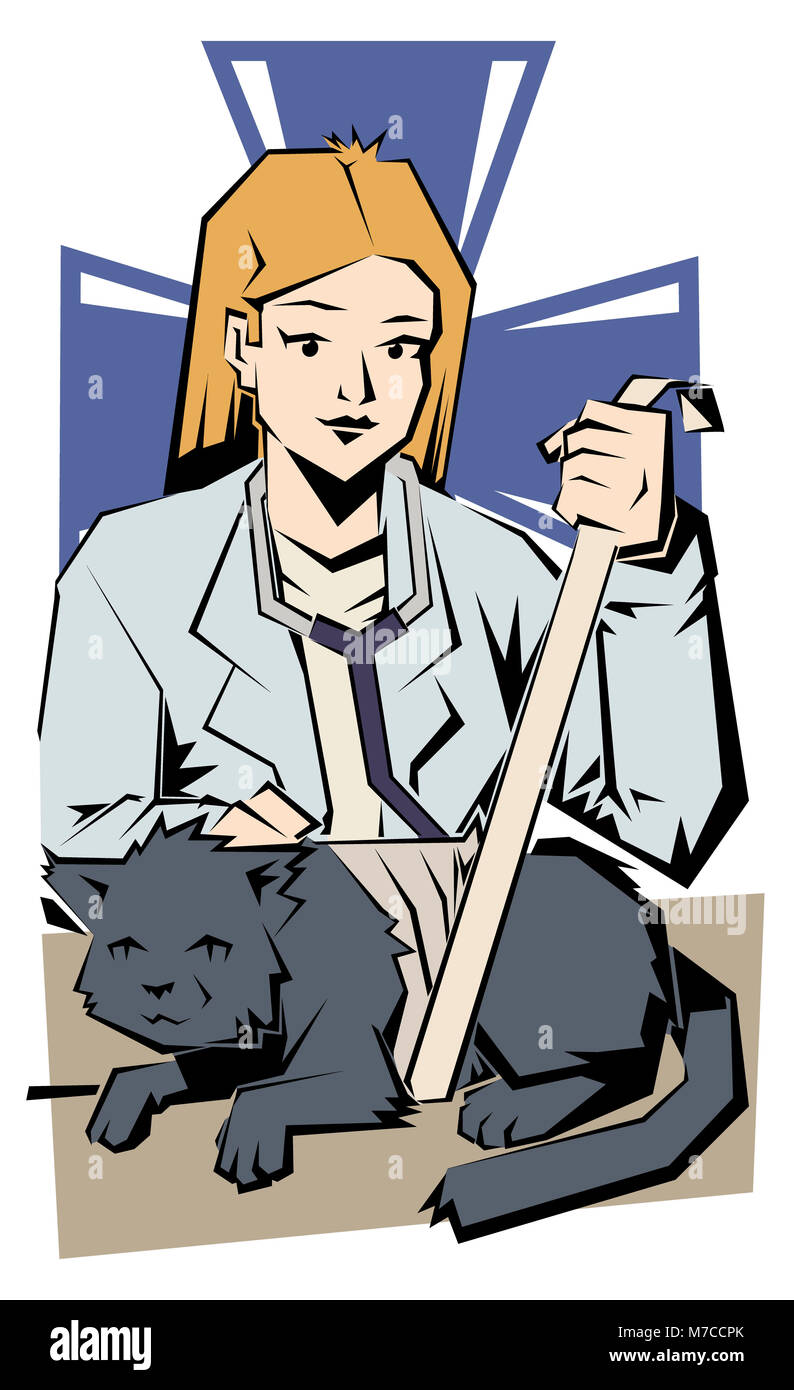Female vet bandaging a cat - Stock Image