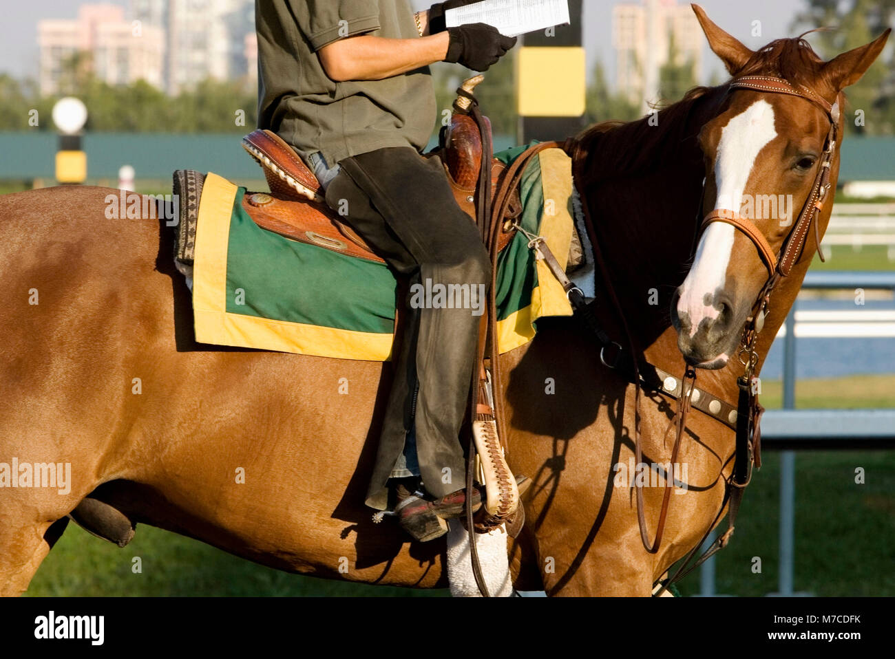 Side profile of a man riding a horse - Stock Image