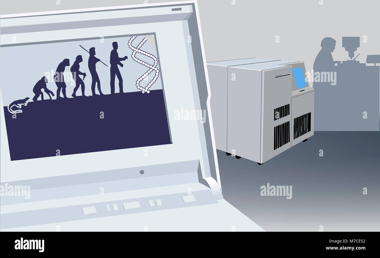 Evolution of a man depicted on a laptop screen - Stock Image
