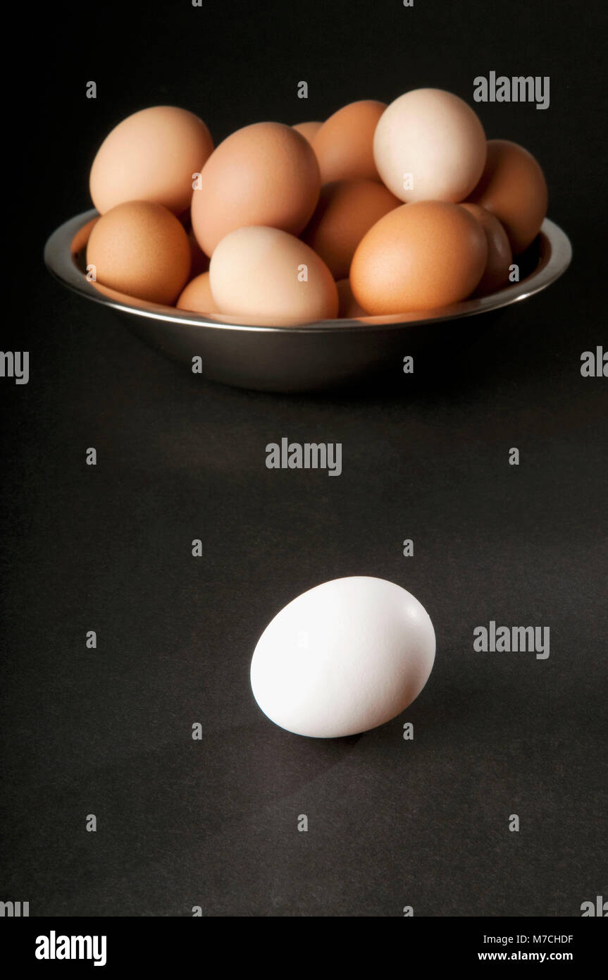 Close-up of a white egg with a bowl of brown eggs Stock Photo
