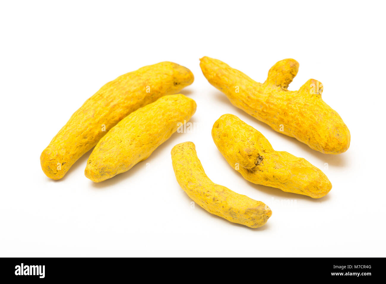 Dried turmeric root-Curcuma longa, bought from a shop in the UK and photographed in a studio. England UK GB - Stock Image