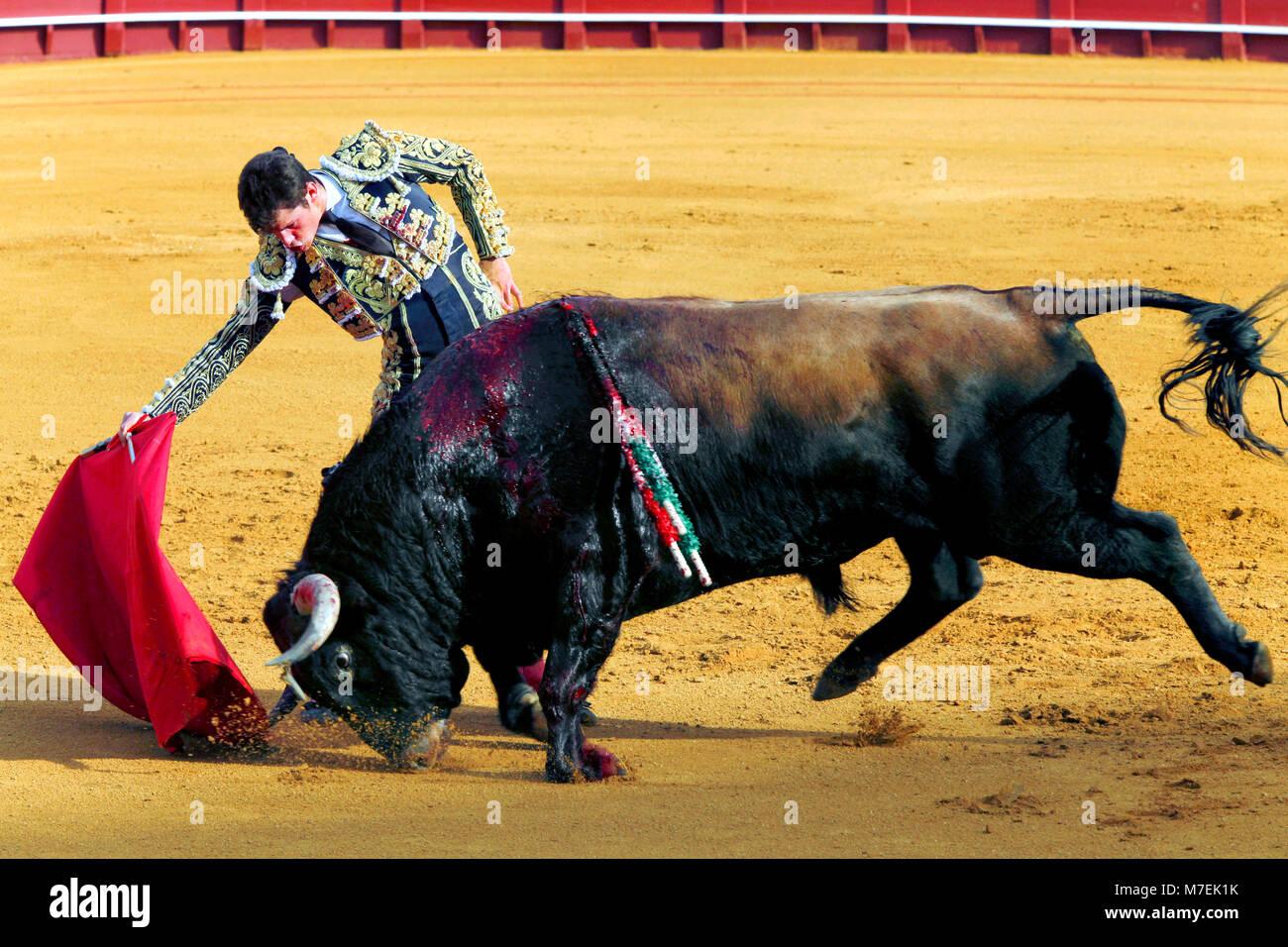 Bullfight during Feria de Abril Seville Fair, Plaza de toros de la Real Maestranza de Caballería de Sevilla - Stock Image