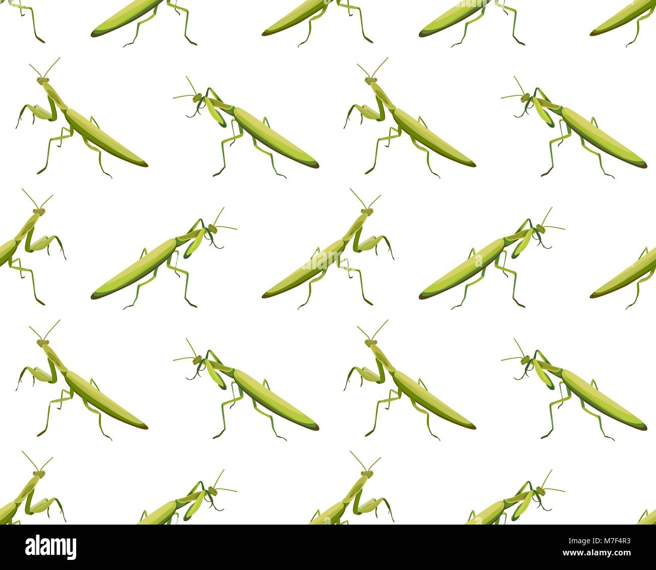 Vector seamless pattern of mantis on white background Stock Vector