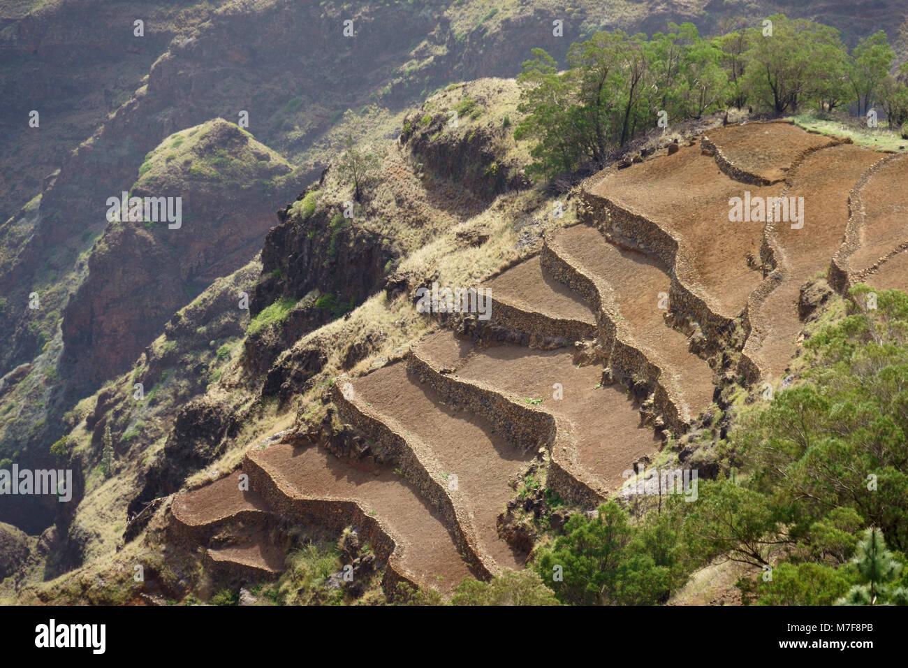 Pico Da Cruz.Field Terraces Near Pico Da Cruz Santo Antao Cape Verde
