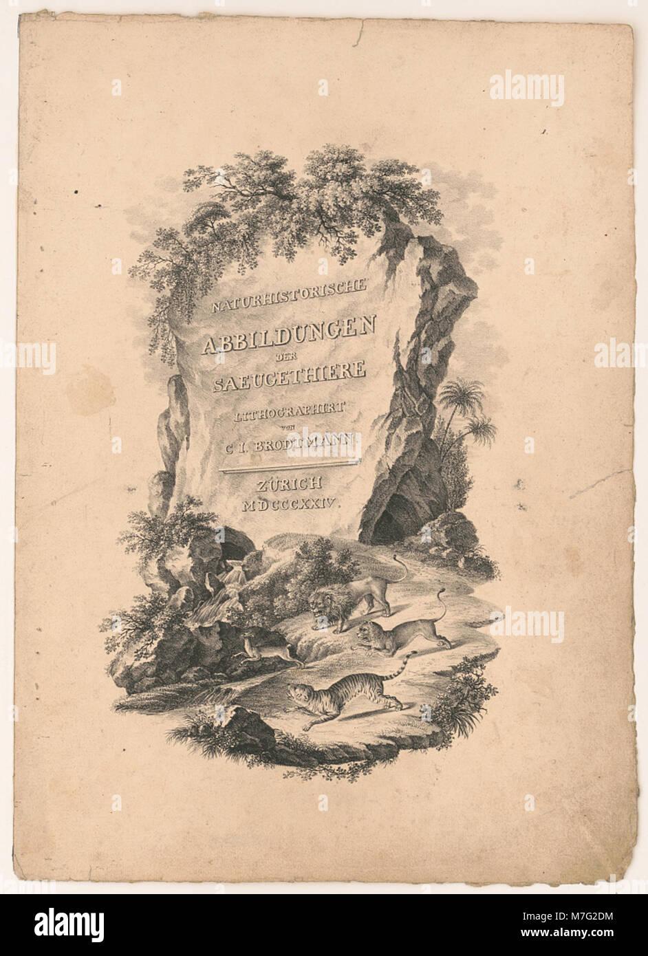 Naturhistorische abbildungen der saeugethiere LCCN2002736912 - Stock Image
