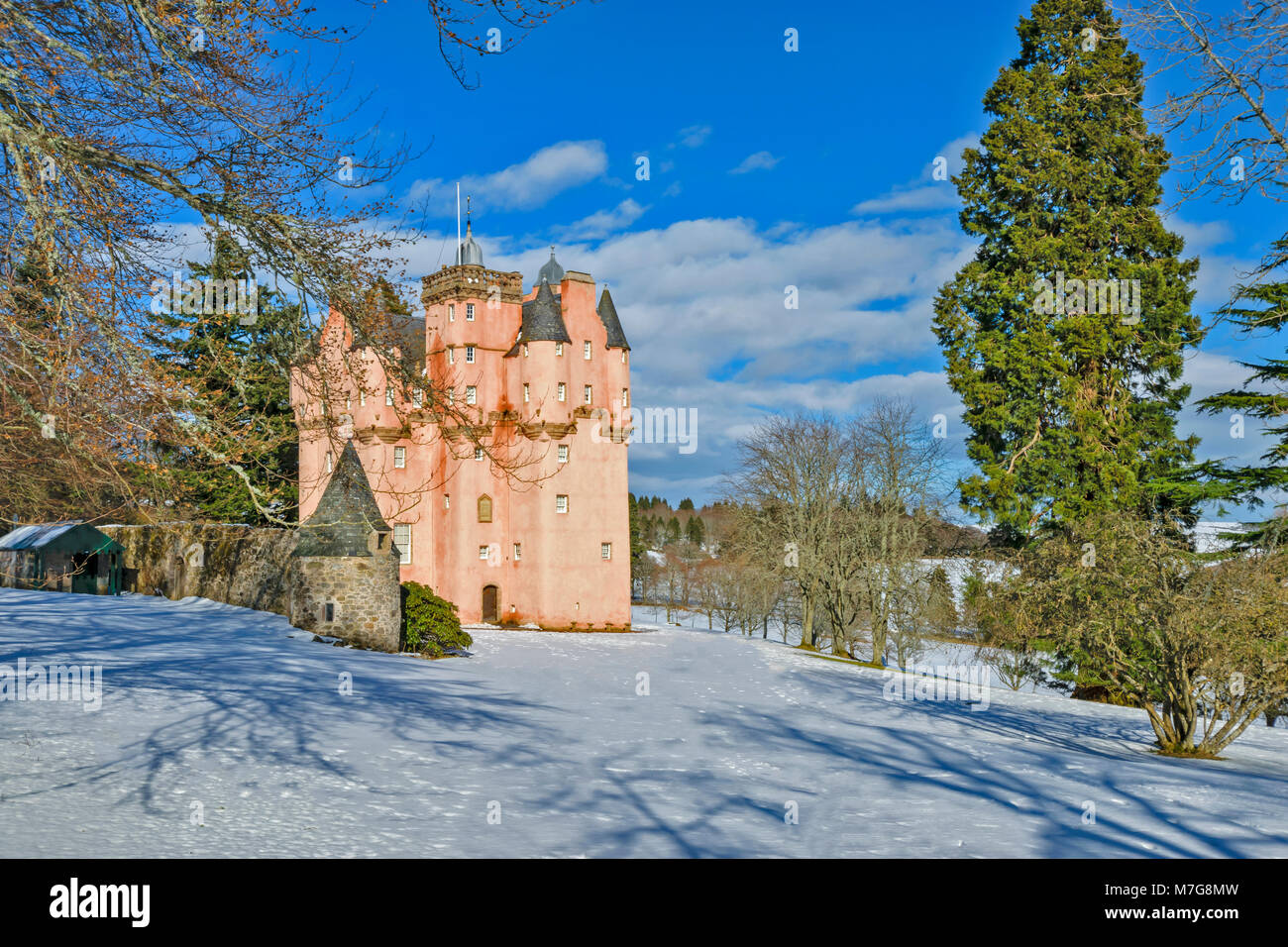 CRAIGIEVAR CASTLE ABERDEENSHIRE SCOTLAND A BLUE SKY  THE PINK TOWER SURROUNDED BY BEECH AND FIR TREES AND WINTER - Stock Image