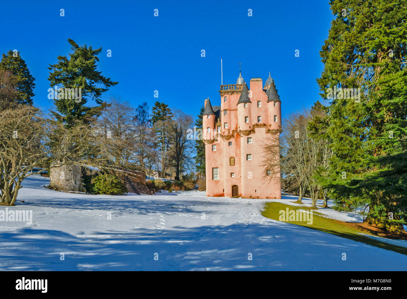 CRAIGIEVAR CASTLE ABERDEENSHIRE SCOTLAND A BLUE SKY AND THE PINK TOWER SURROUNDED BY EVERGREEN FIR TREES AND WINTER - Stock Image