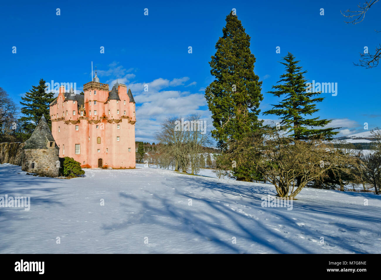 CRAIGIEVAR CASTLE ABERDEENSHIRE SCOTLAND BLUE SKY  THE PINK TOWER SURROUNDED BY EVERGREEN FIR TREES AND DEEP WINTER - Stock Image