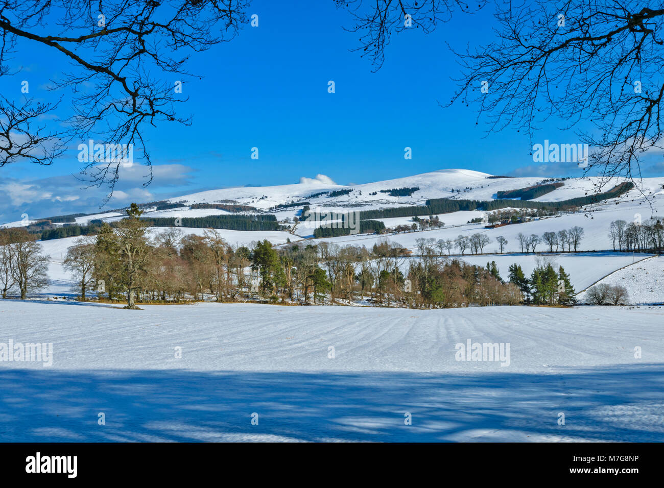 CRAIGIEVAR CASTLE ABERDEENSHIRE SCOTLAND VIEW OF SNOW COVERED COUNTRYSIDE FROM THE CASTLE GROUNDS - Stock Image