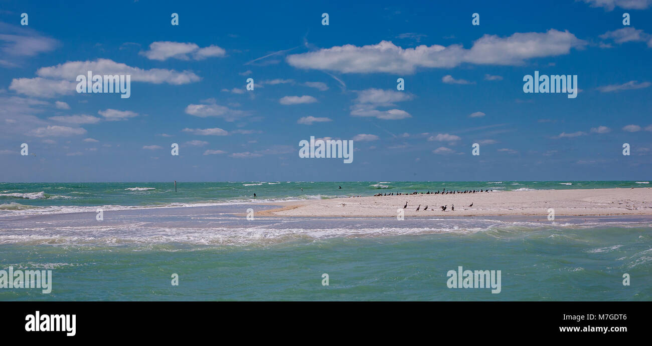 Sand beach with birds on the southern tip of Egmont Key State Park in the Gulf of Mexico on the west coast of  Florida Stock Photo