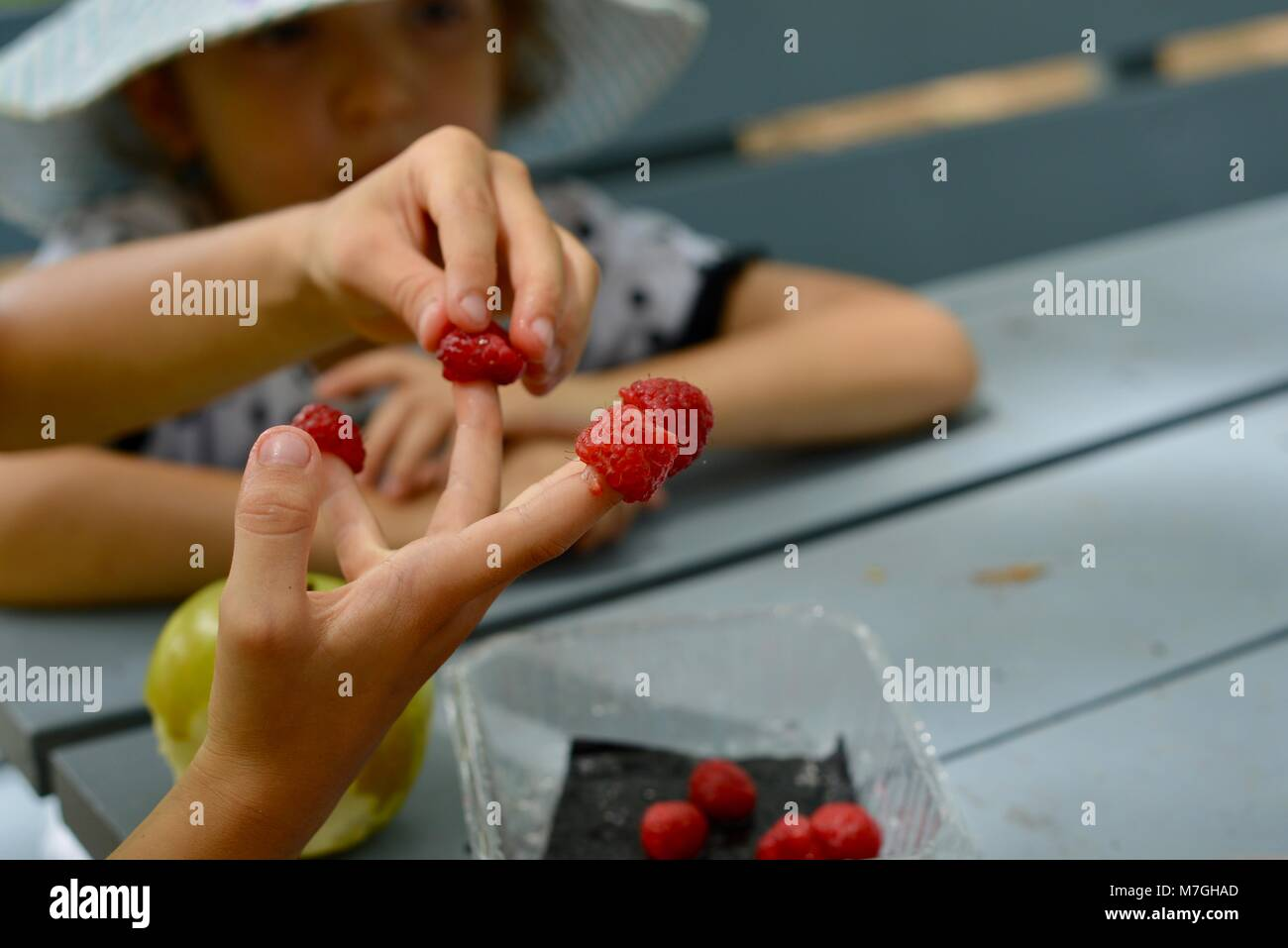 Kids eating raspberries, Apex Park, Riverway Drive, Condon QLD, Australia - Stock Image