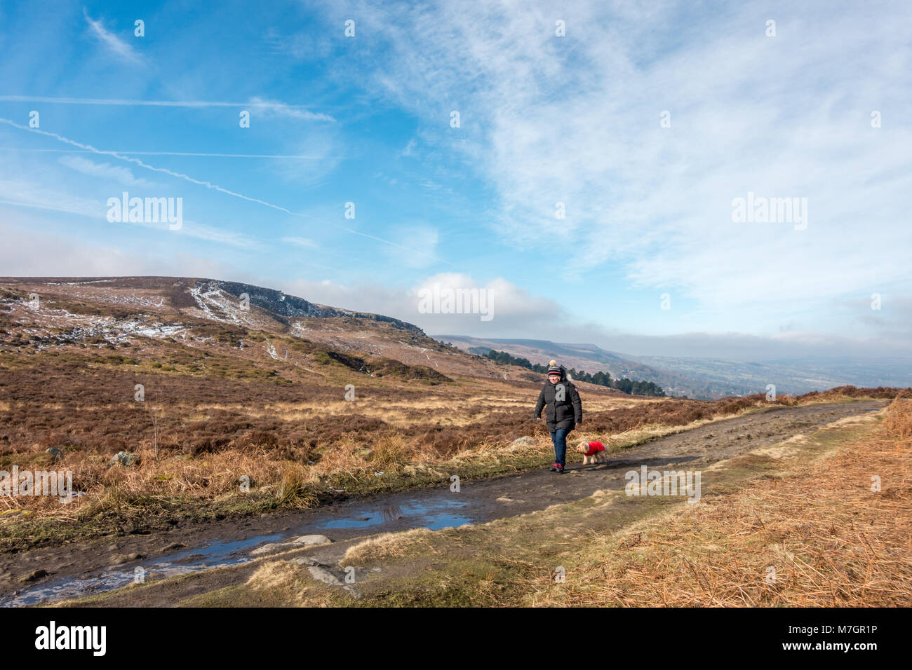 Woman in a bobble hat walking a small toy breed dog in a red coat along Ilkley Moor on a cold but sunny day with - Stock Image