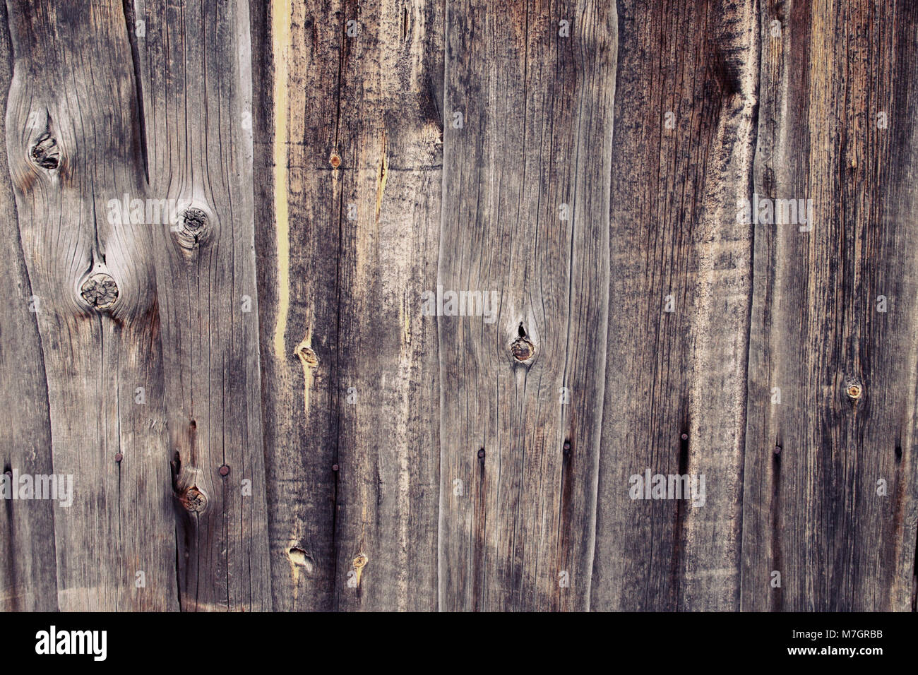 Wooden planks background. Wood texture - Stock Image