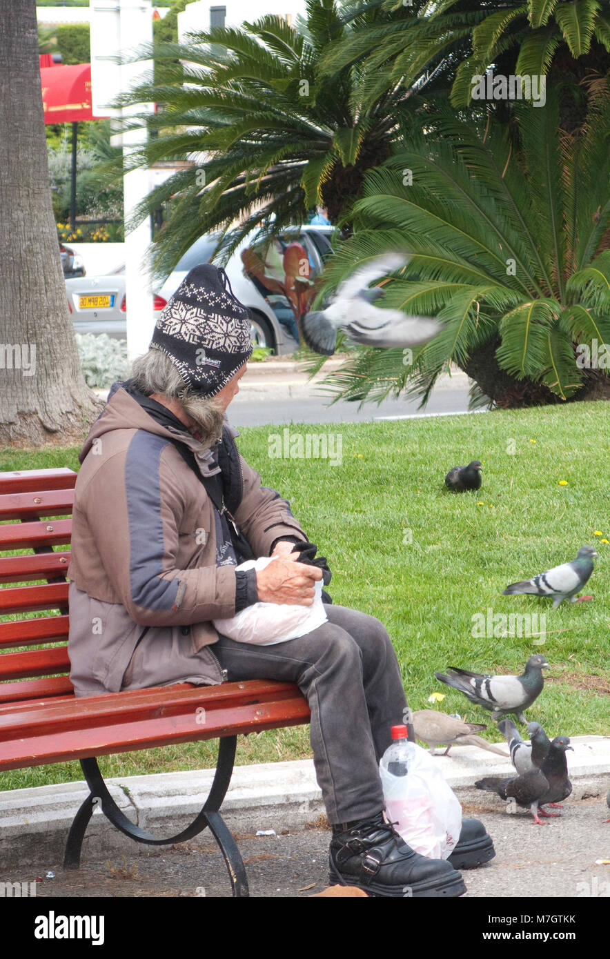 Poor homeless person sitting on a bench an feeds pigeons, Boulevard Croisette, Cannes, french riviera, South France, - Stock Image