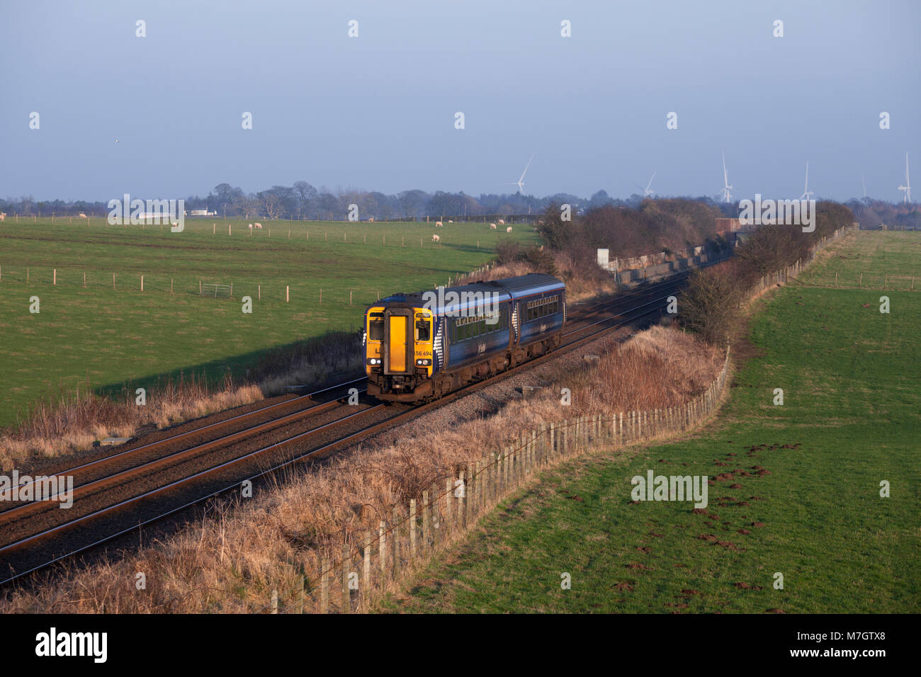 A Scotrail class 156 sprinter train passes Rigg (West of Gretna Green) with the 1323 Newcastle - Glasgow Central - Stock Image