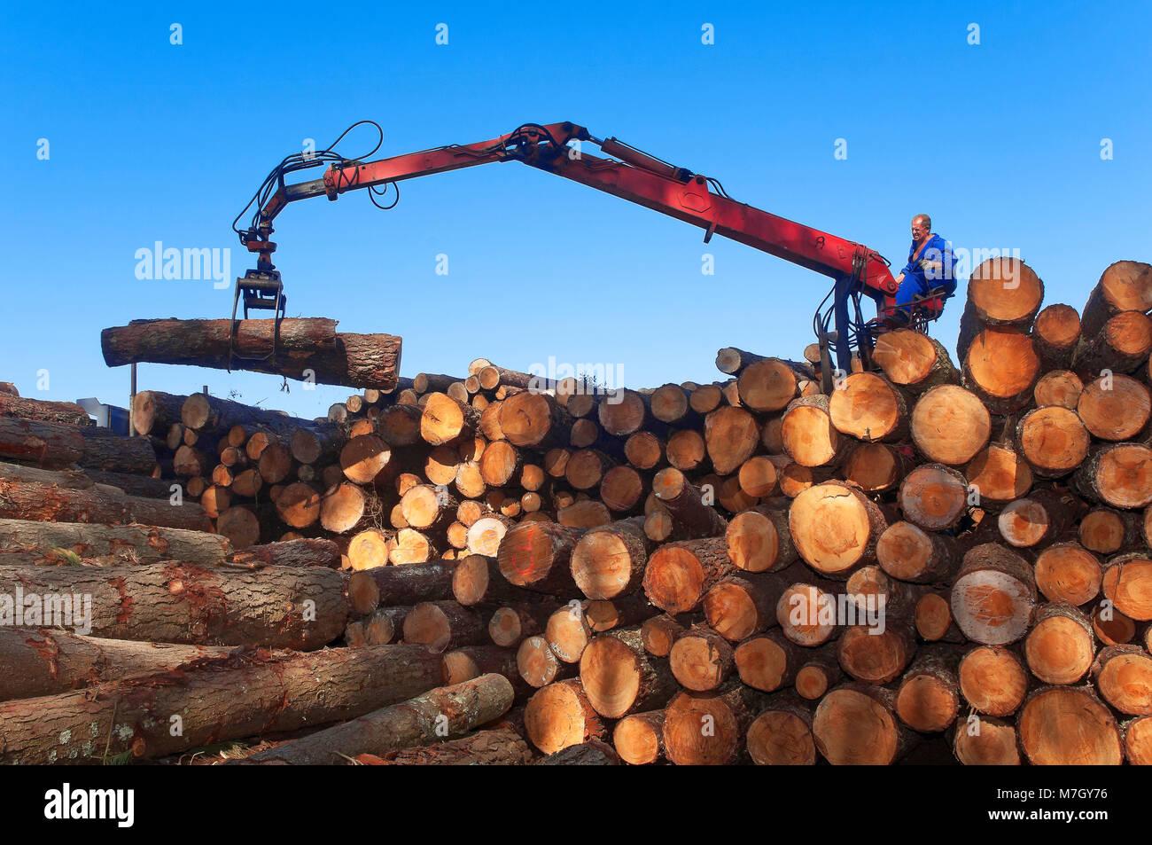 Wood industry, Morpeguite, Muxia, La Coruña province, Region of Galicia, Spain, Europe - Stock Image