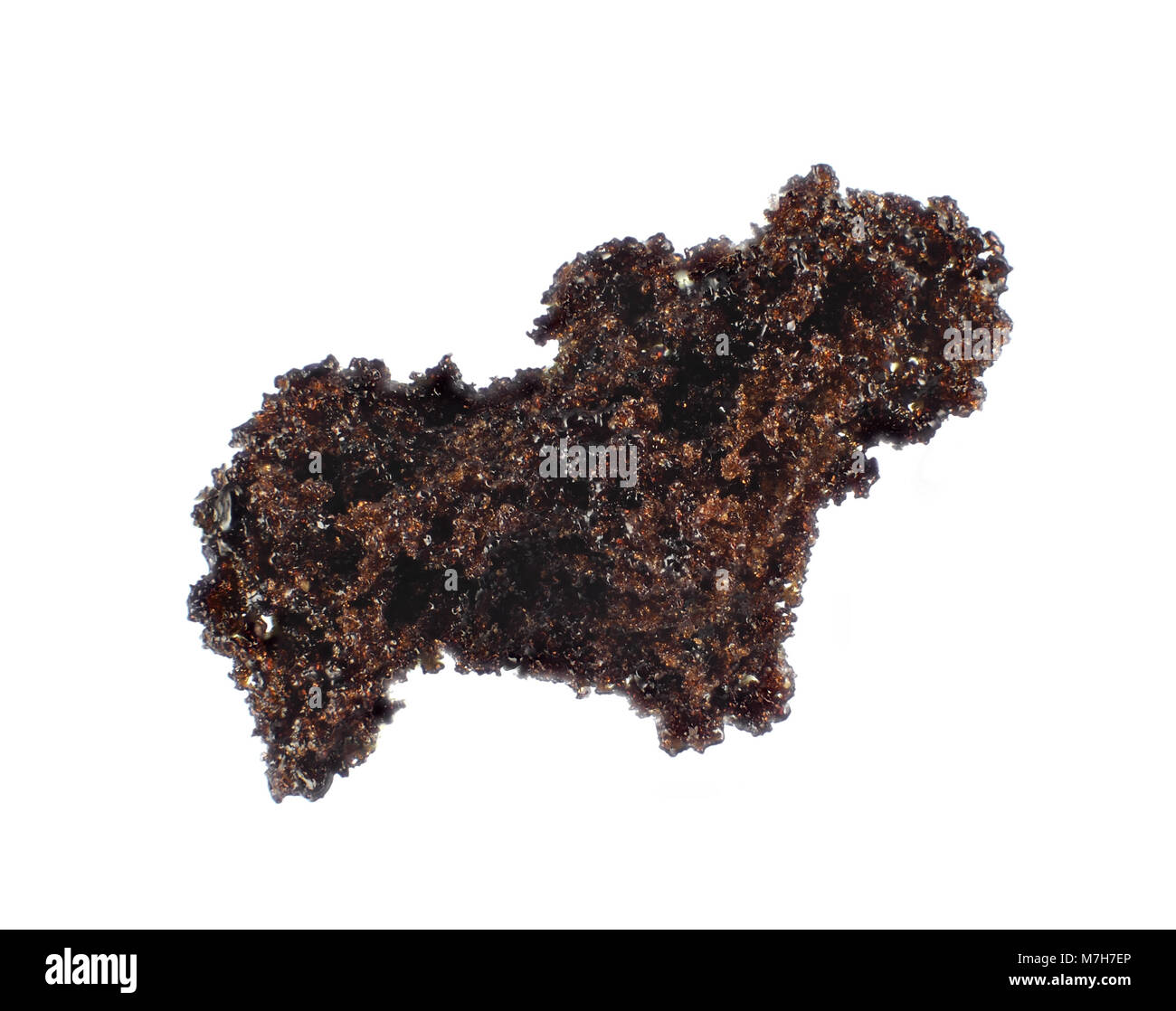 Instant coffee isolated on white background, light micrograph - Stock Image