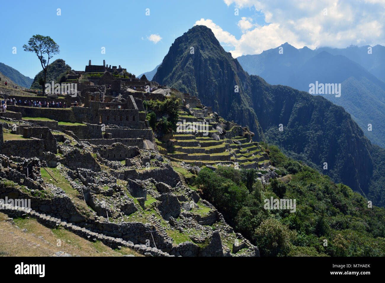 The mountain peak of Huayna Picchu stands guard over the old Incan city of Machu Picchu in the Andes Mountains of - Stock Image