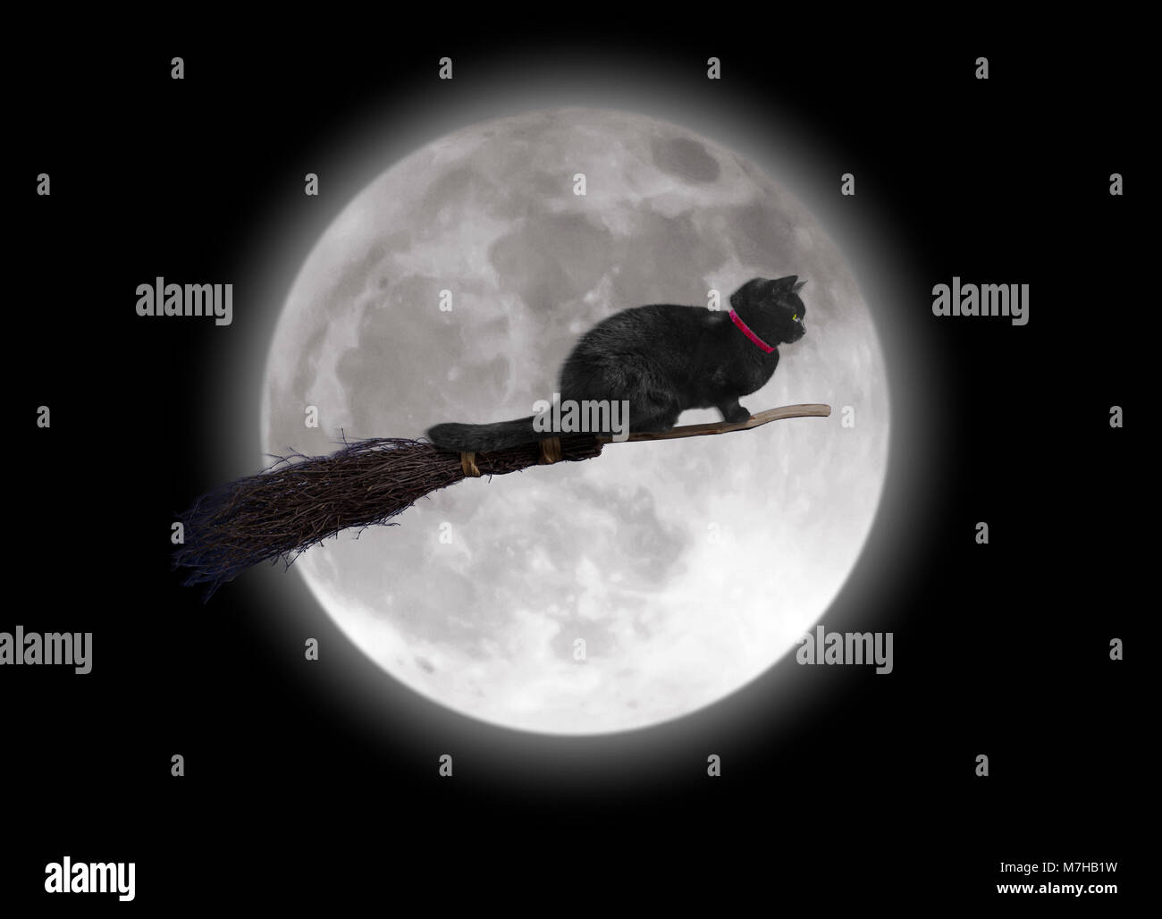 Black cat on a broomstick passing the full moon - Stock Image