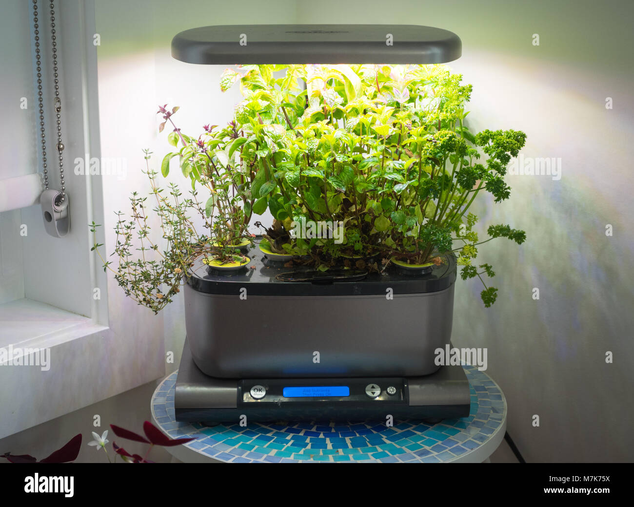 An miracle gro aerogarden a popular home indoor garden that uses an miracle gro aerogarden a popular home indoor garden that uses hydroponics to grow herbs and vegetables workwithnaturefo