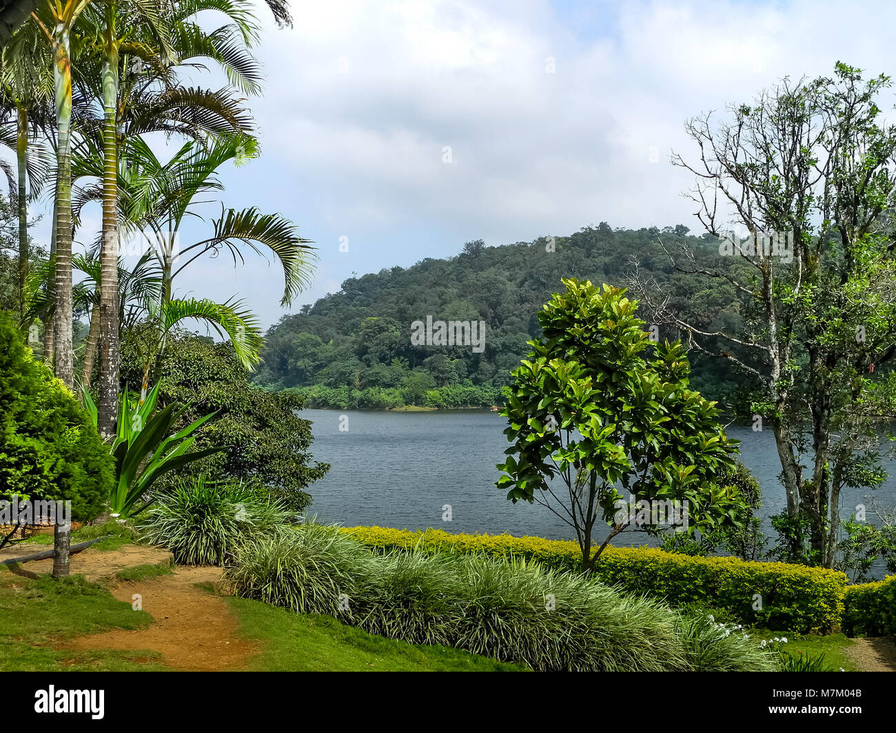THEKKADI, KERALA, INDIA - DEC. 16 2011: Beautiful landscape with colorful wild forest and Periyar River, Thekkadi, - Stock Image