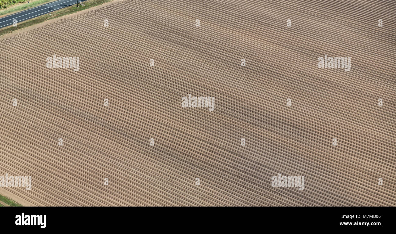 texture in australia field of colutivation from the high - Stock Image