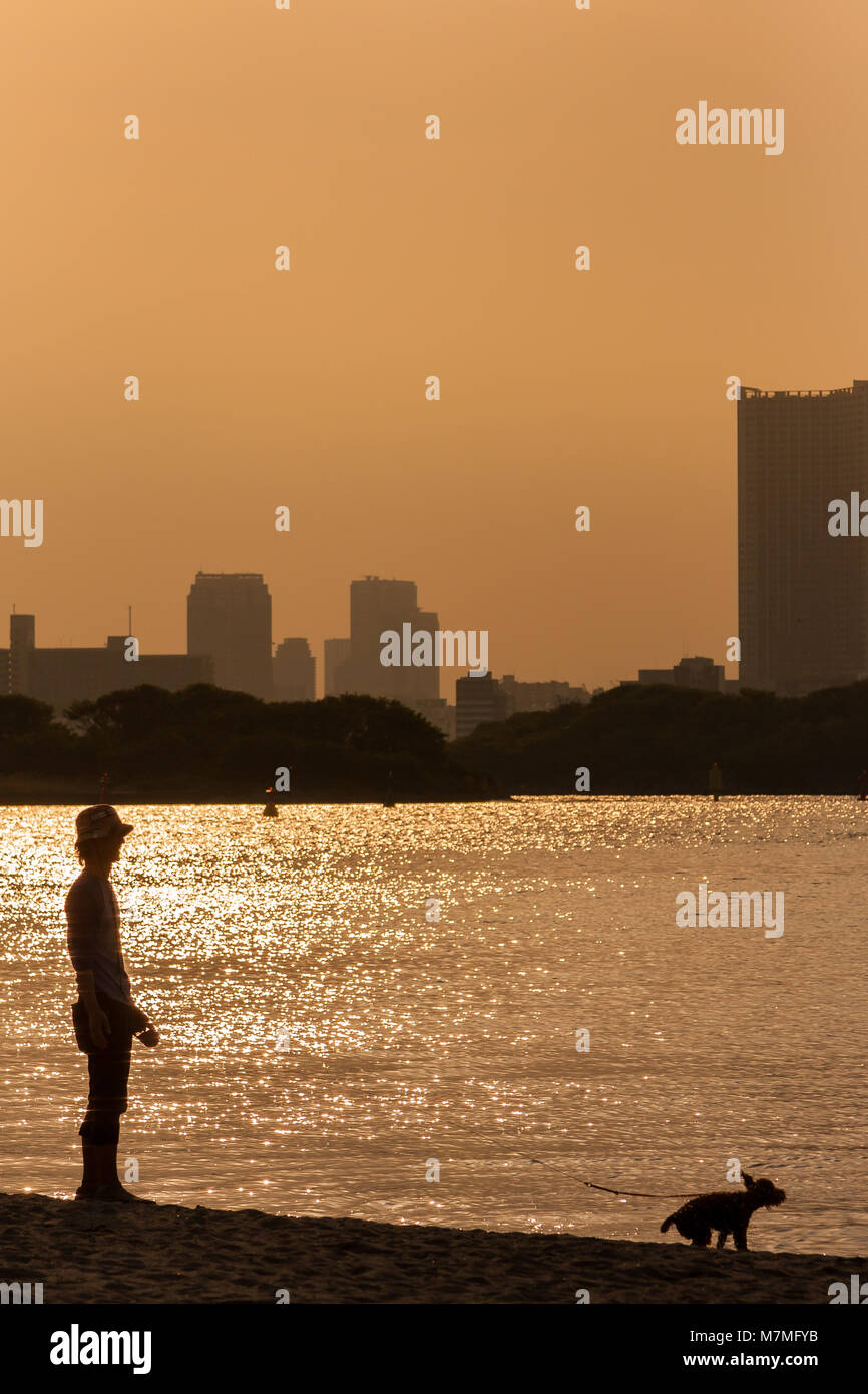 A young man in silhouette plays with his small dog by the side of Tokyo Bay in Odaiba, Tokyo, Japan Saturday, May - Stock Image