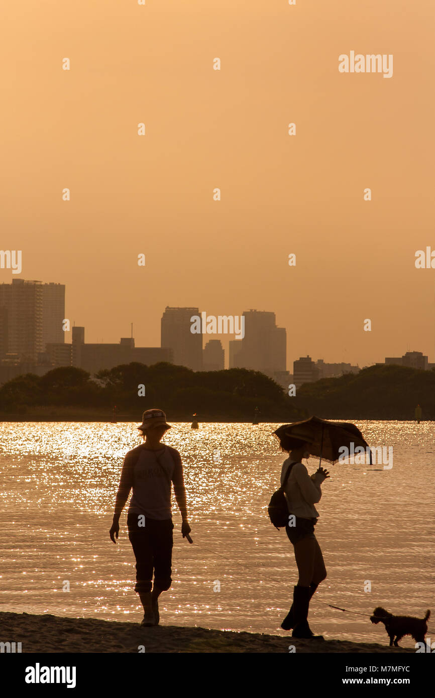 A young couple in silhouette play with their small dog by the side of Tokyo Bay in Odaiba, Tokyo, Japan Saturday, Stock Photo