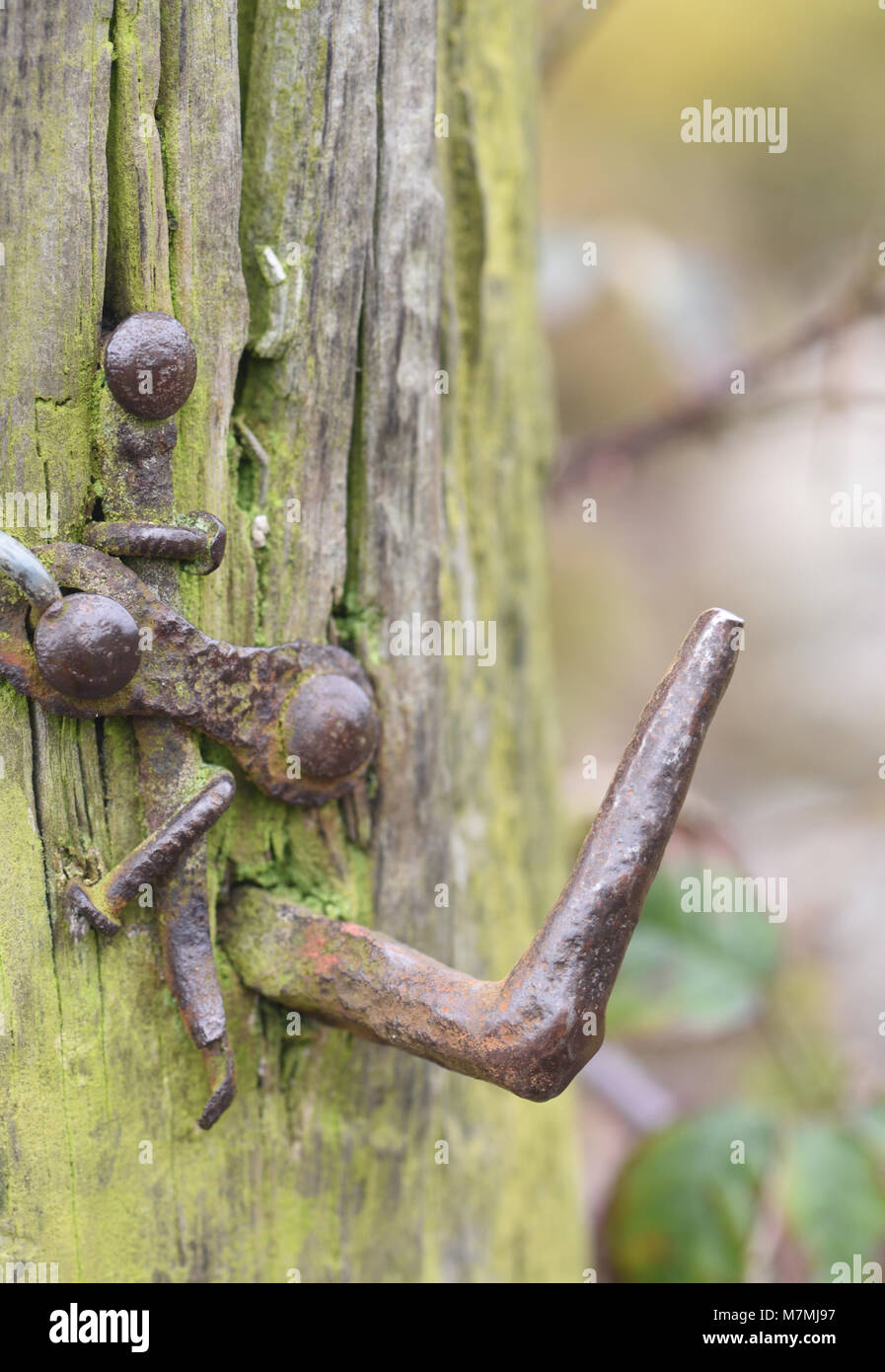 A well-worn ancient gate hinge and gate post. Stoney Middleton, Derbyshire, UK. - Stock Image
