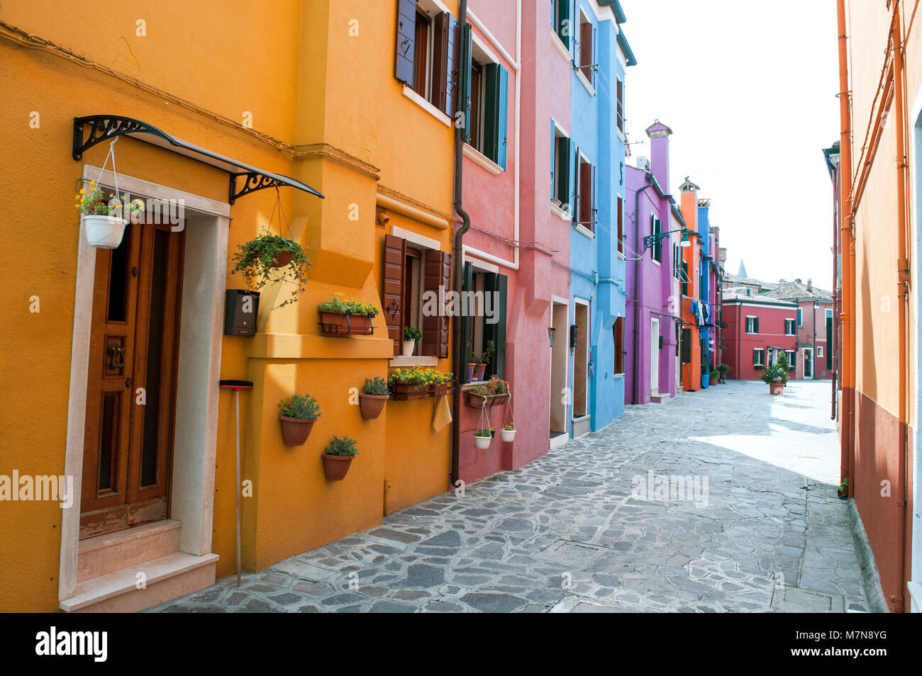 Venice, Burano island, Italy, Europe - typical street with colorful houses - Stock Image