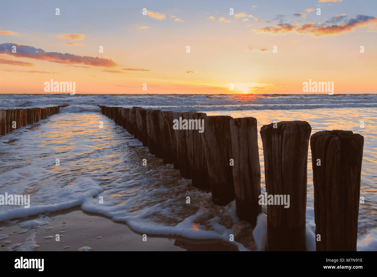 Sunset on the beach with wood groves in the foreground - Stock Image