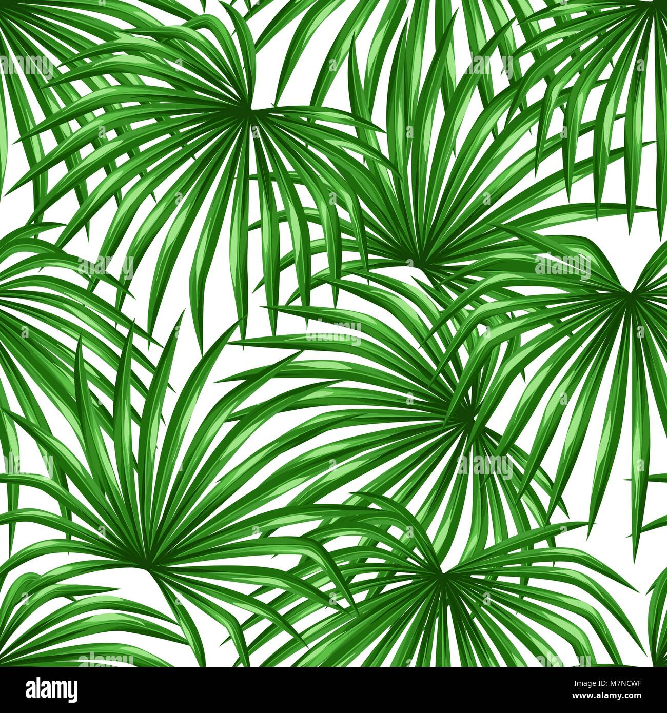 Seamless Pattern With Palms Leaves Decorative Image Tropical Leaf Of Stock Vector Image Art Alamy The tropical plants in this list can be grown indoors in any climate, but many can also be overwintered indoors in cooler climates and then brought outdoors in the summer. https www alamy com stock photo seamless pattern with palms leaves decorative image tropical leaf 176877387 html