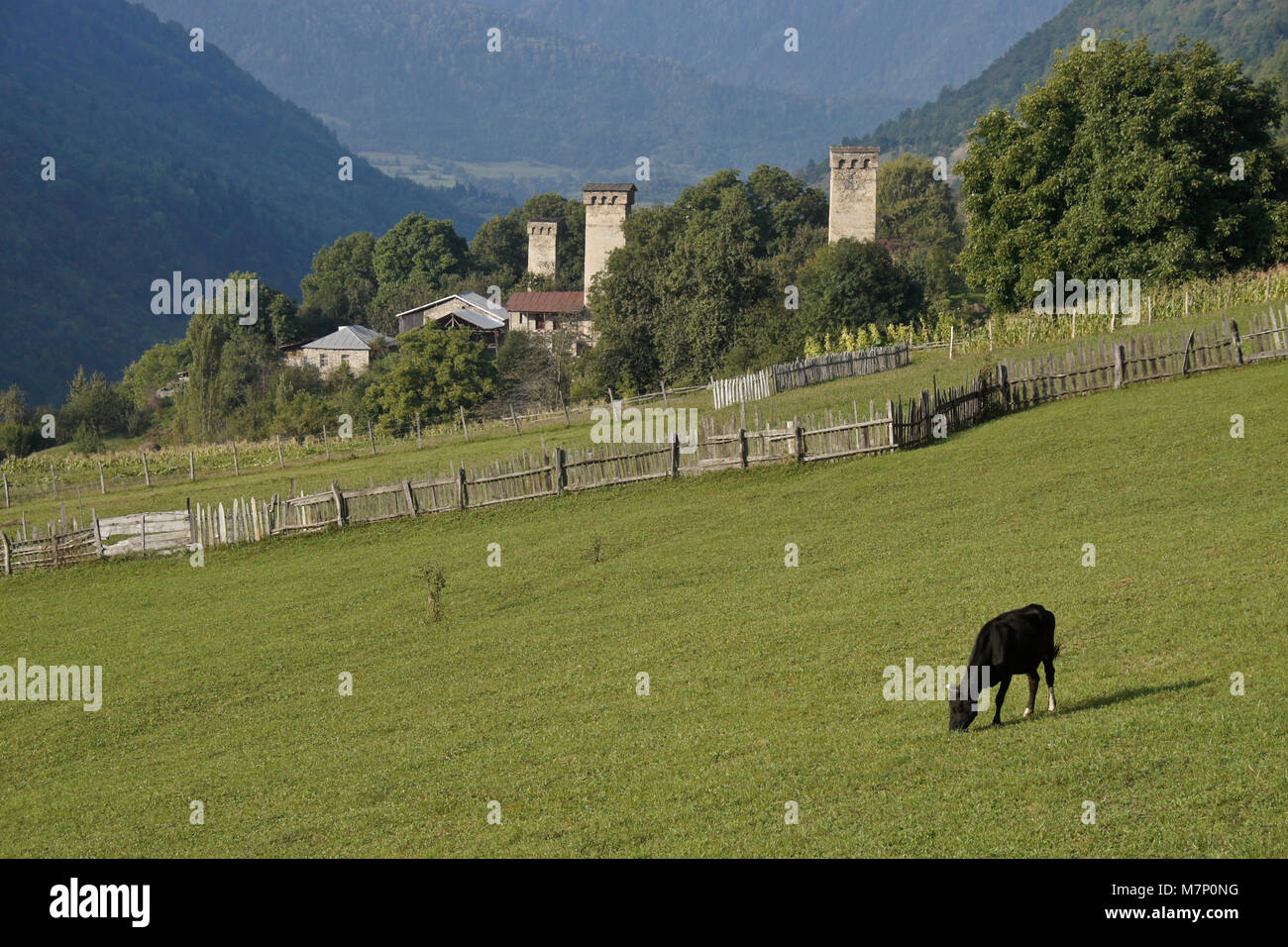 Historic tower houses stand amid more modern homes on a hillside in Mestia, Svaneti region of the Caucasus Mountains, - Stock Image