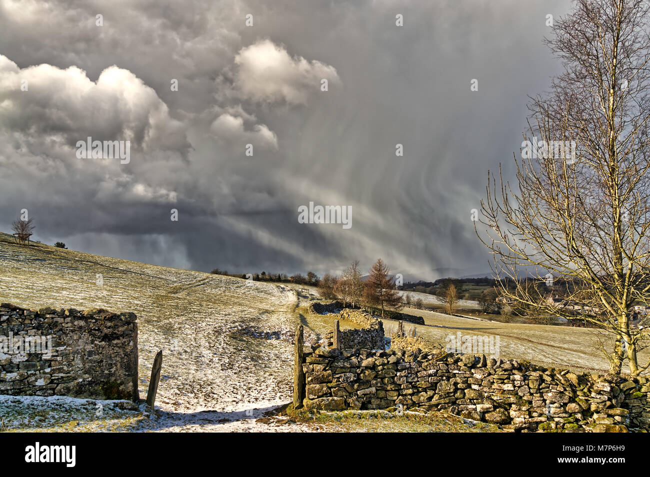 A snow shower falling in the North of England with a gate and dr - Stock Image