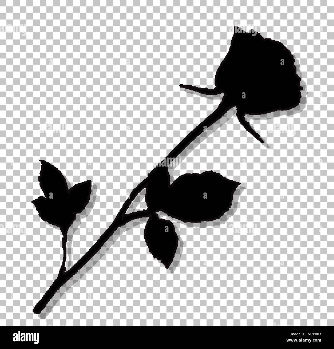 ac157c098 Black silhouette of rose flower isolated on transparent background.  Beautiful bud of rose on long stem. Monochrome vector illustration, sign,  symbol,
