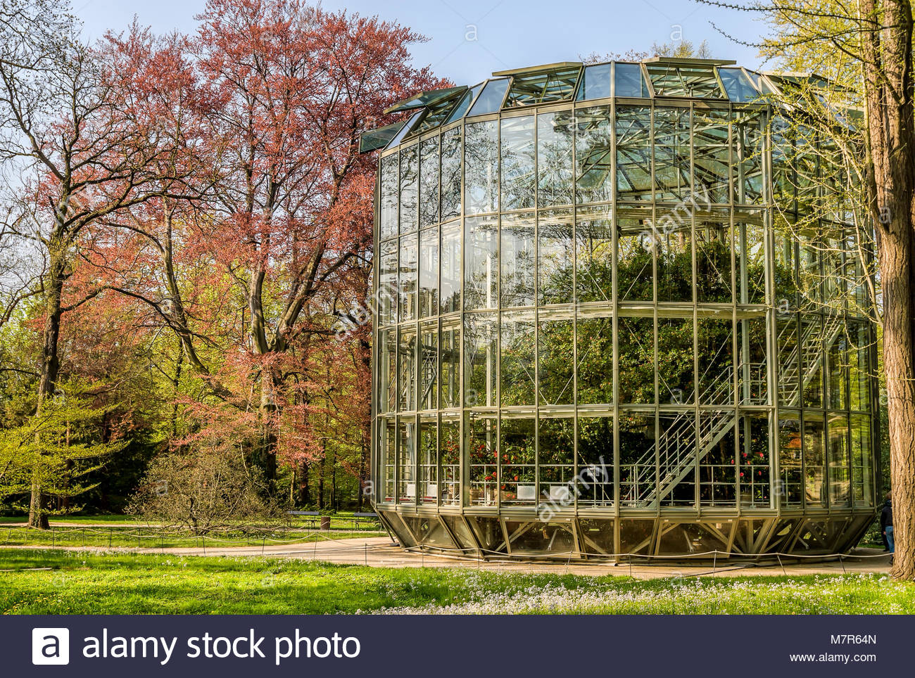 The portable Camellia House at Pillnitz Castle near Dresden, Germany. |  Kamelienhaus im Schloss Pillnitz, Dresden, - Stock Image