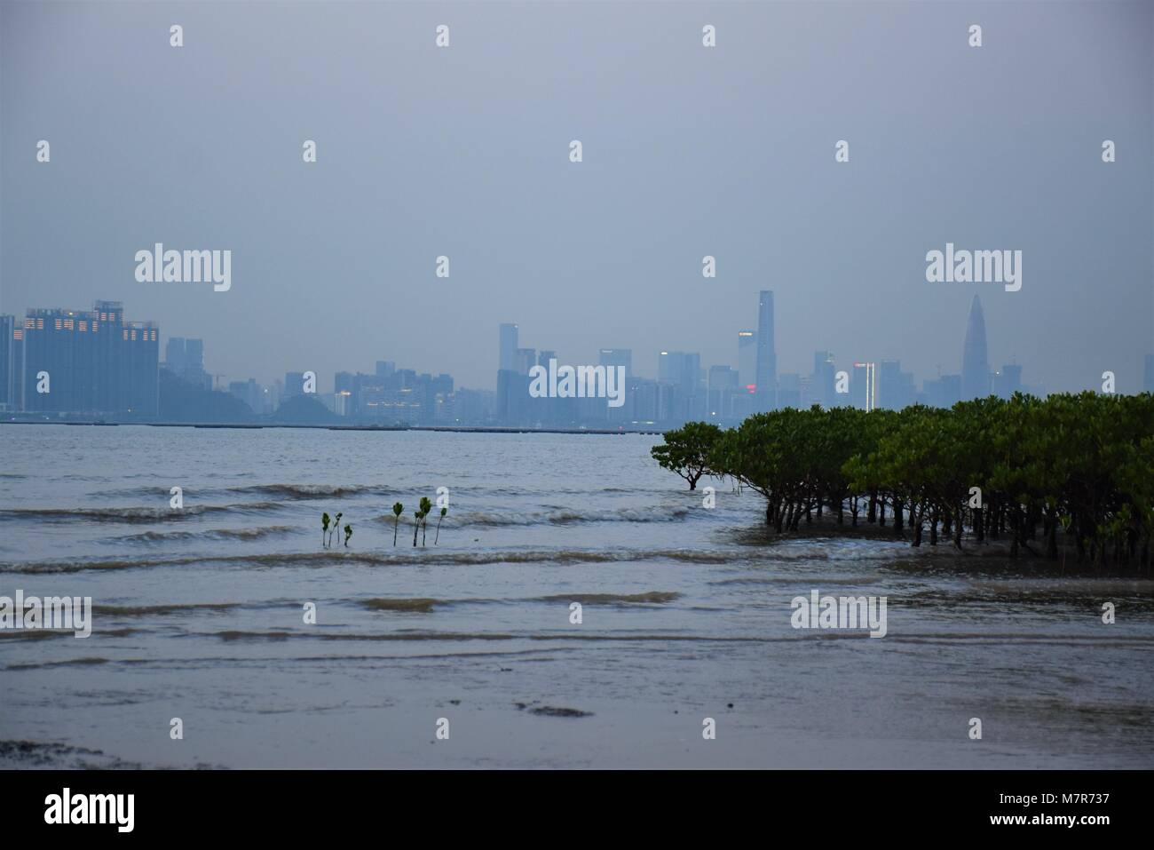 Shenzhen bay and skyline seen from New Territories, Hong Kong Stock Photo