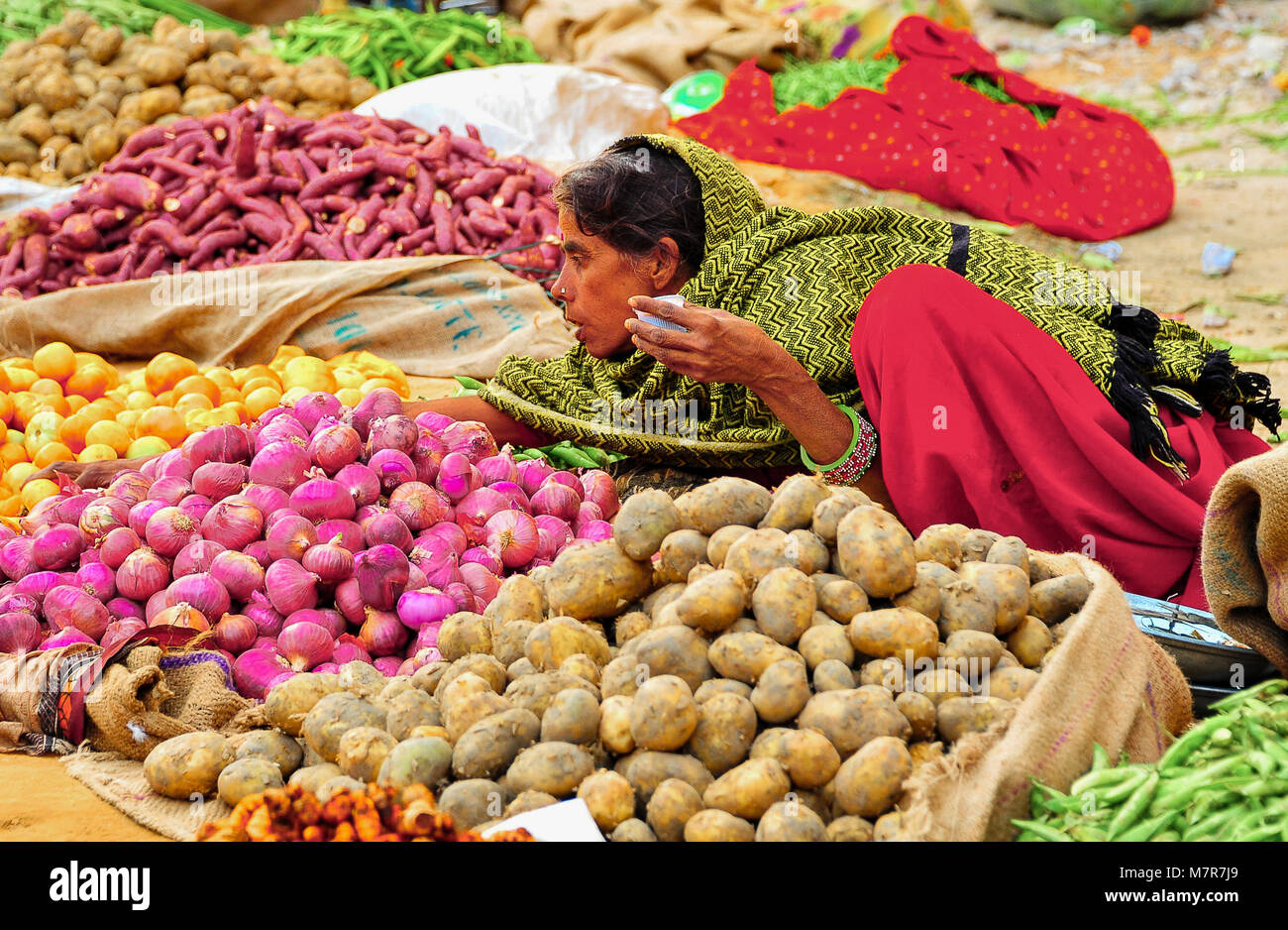 Jaipur, India: Colourful array of fresh vegetables at a traditional indian roadside market. Local woman is seated - Stock Image