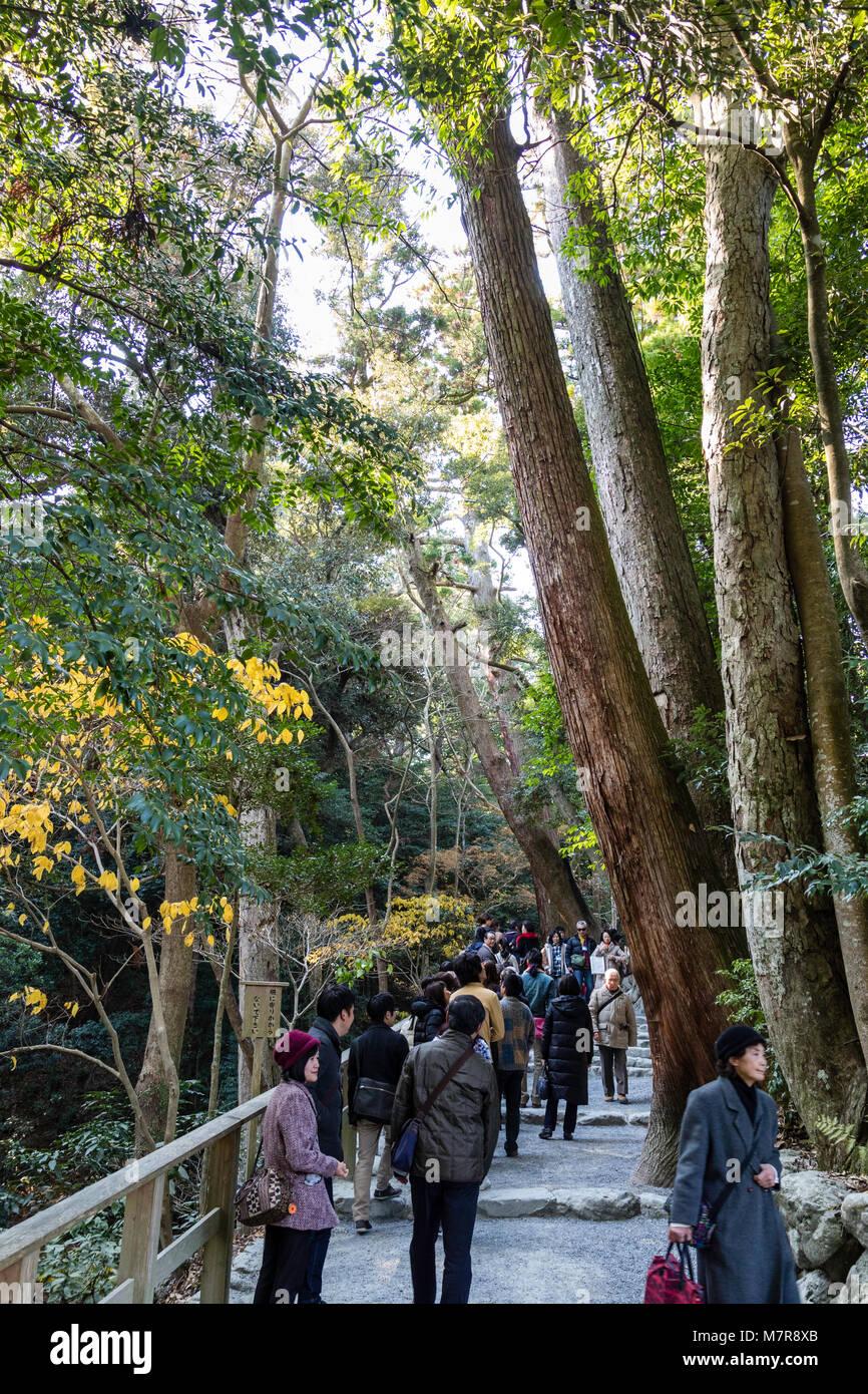 Japan, Ise, Ise-jingu Geku, Outer Shrine. People and pilgrims walking along cedar tree-lined avenue to shrine. - Stock Image