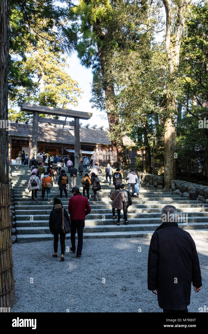 Japan, Ise Grand Shrine, Naiku, inner shrine. Torii gate and steps to wooden shrine, with many people. - Stock Image