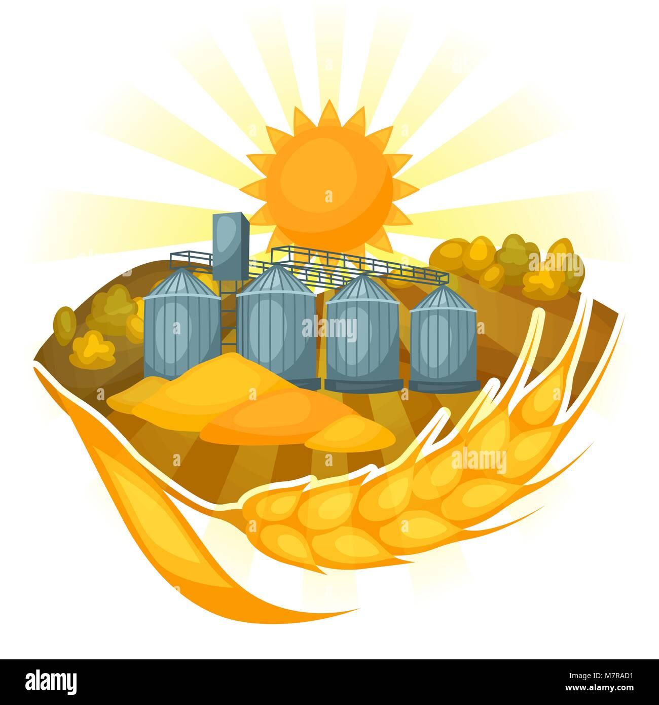 Granary on wheat field. Agricultural illustration farm rural landscape - Stock Vector
