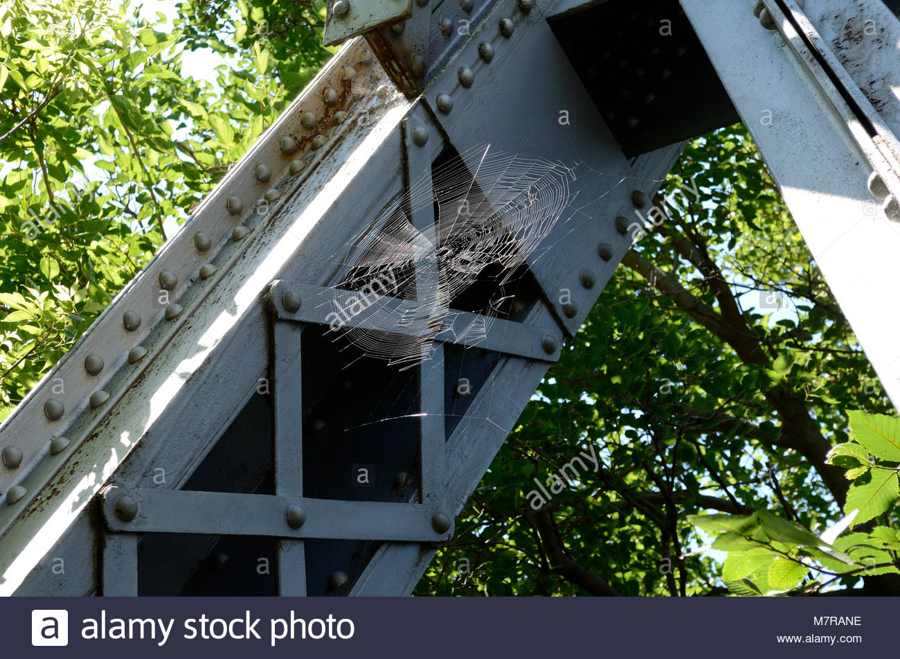 Spider Web on Truss Bridge. A spider has made a home on the Valkommen Trail Bridge. A nature hike in Lindsborg Kansas Stock Photo