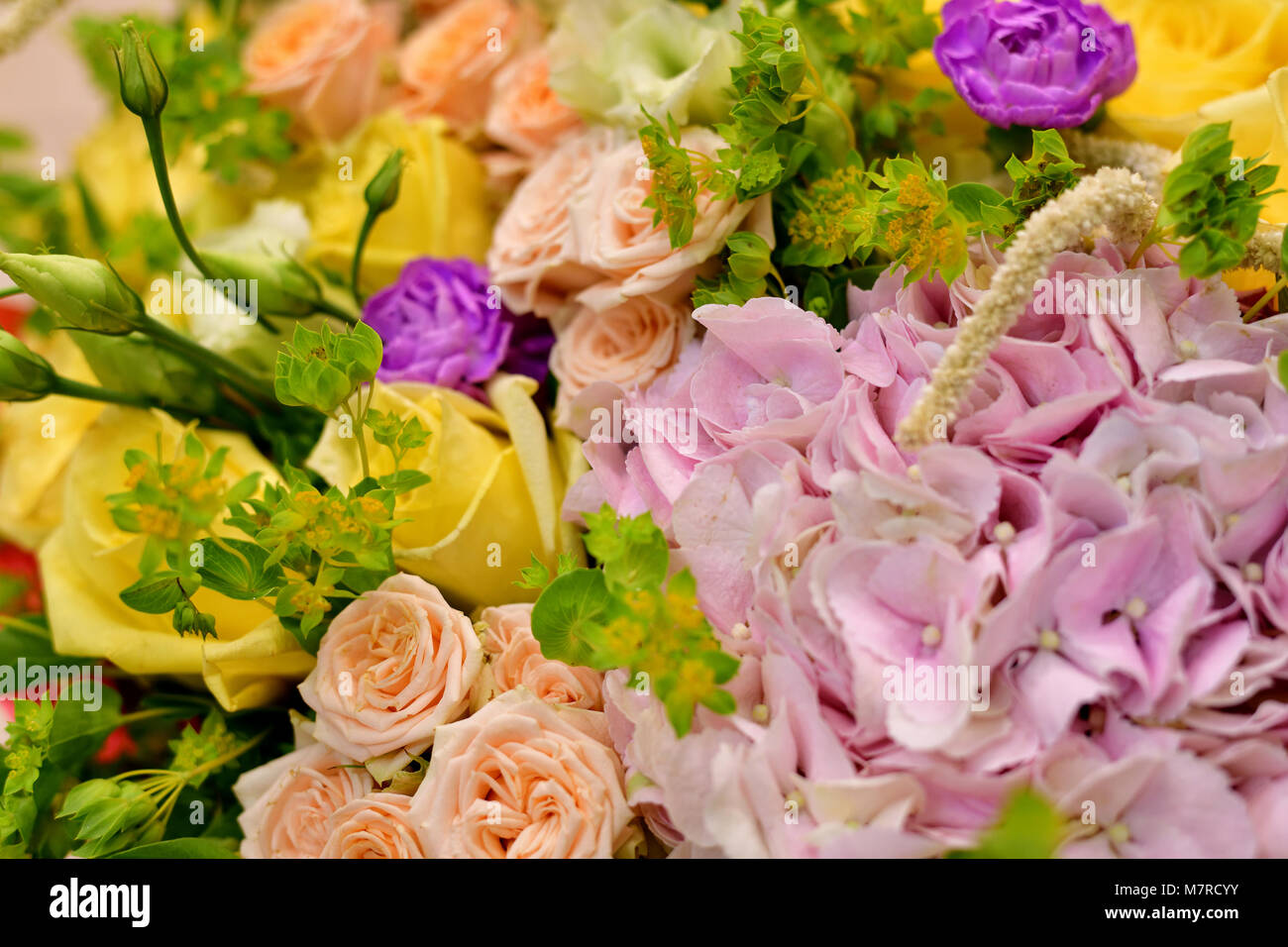 Close up bouquet of different flowers stock photo 176921359 alamy close up bouquet of different flowers izmirmasajfo