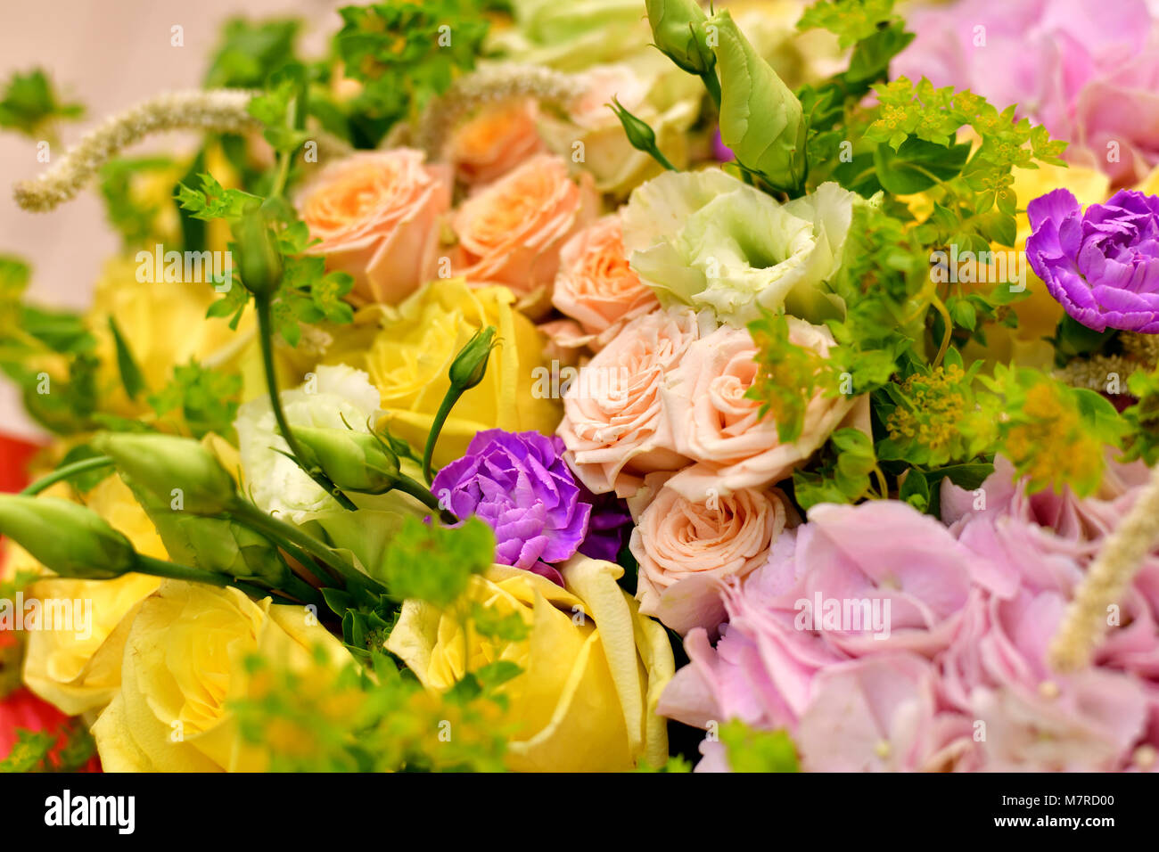 Close up bouquet of different flowers stock photo 176921360 alamy close up bouquet of different flowers izmirmasajfo