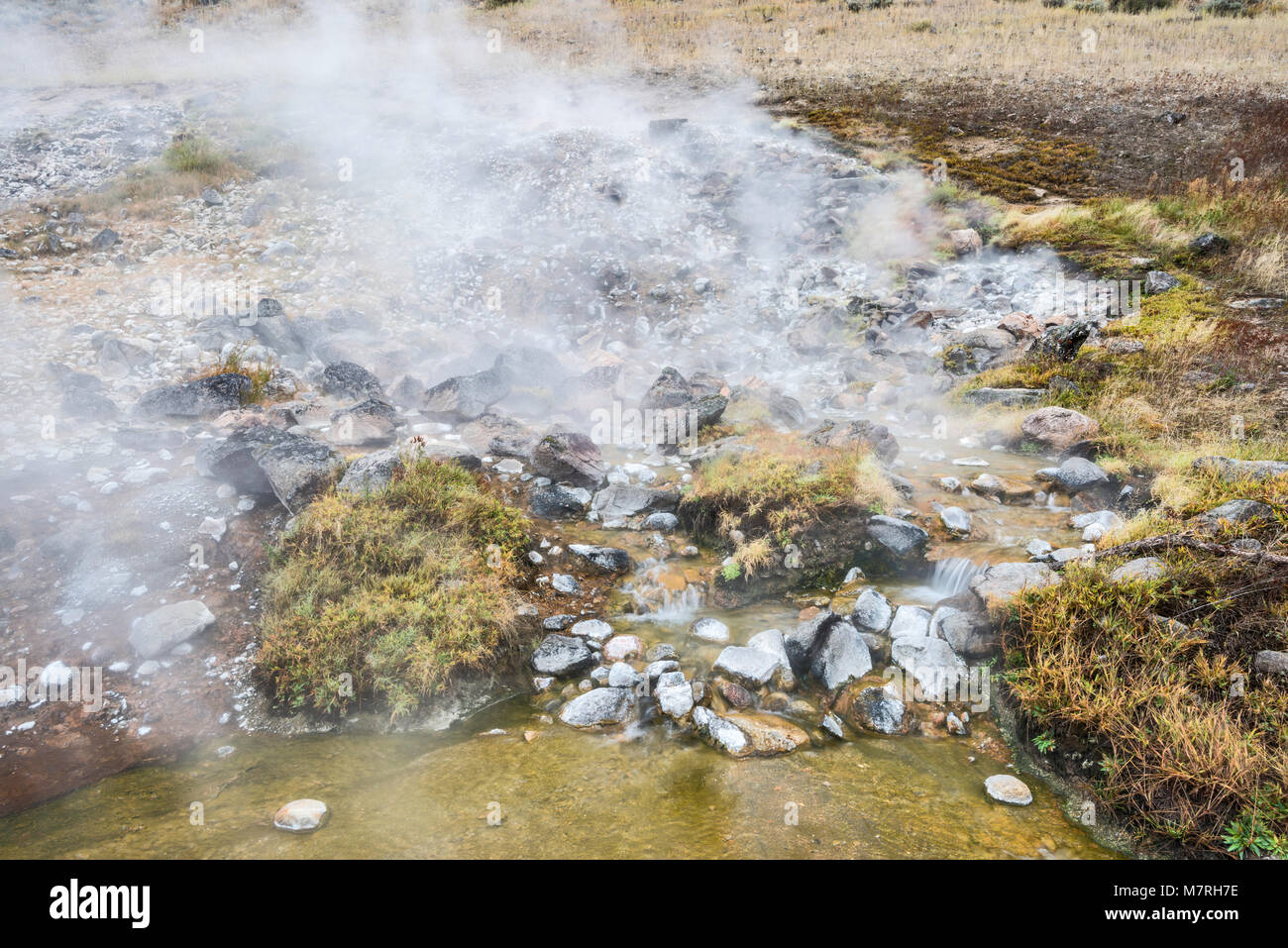 Sunbeam Hot Springs steaming in Salmon River Valley, Land of the Yankee Fork, near Sunbeam, Salmon River Scenic Stock Photo