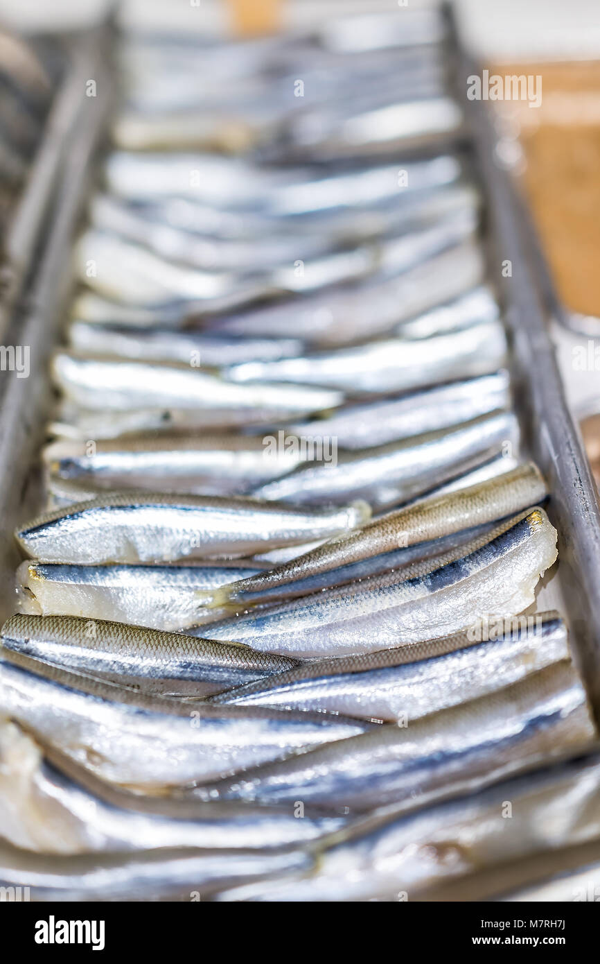 Closeup of many anchovies sardines small raw scales skin fish in seafood market shop display tray - Stock Image