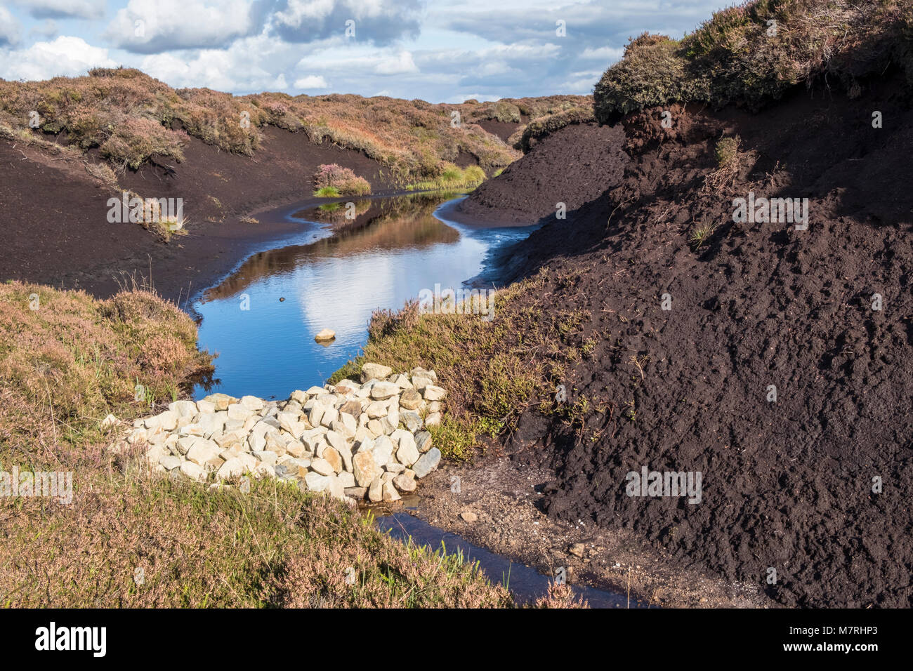 Gulley blocking. Stones used to block a gulley and prevent further erosion of moorland peat on Kinder Scout, Derbyshire, - Stock Image