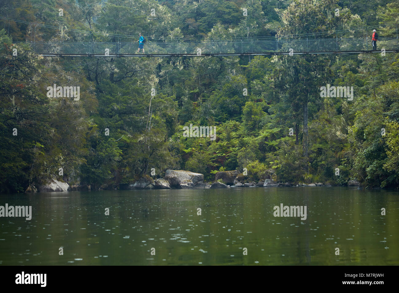 Walkers on swingbridge on Abel Tasman Coast Track over Sandfly Bay Lagoon, Abel Tasman National Park, Nelson Region, - Stock Image