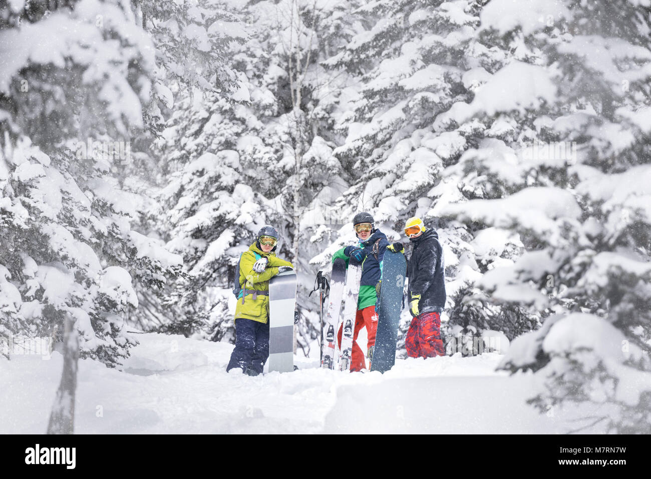 Group of skiers and snowboarders are choosing offpiste track through forest slope. Ski resort concept - Stock Image