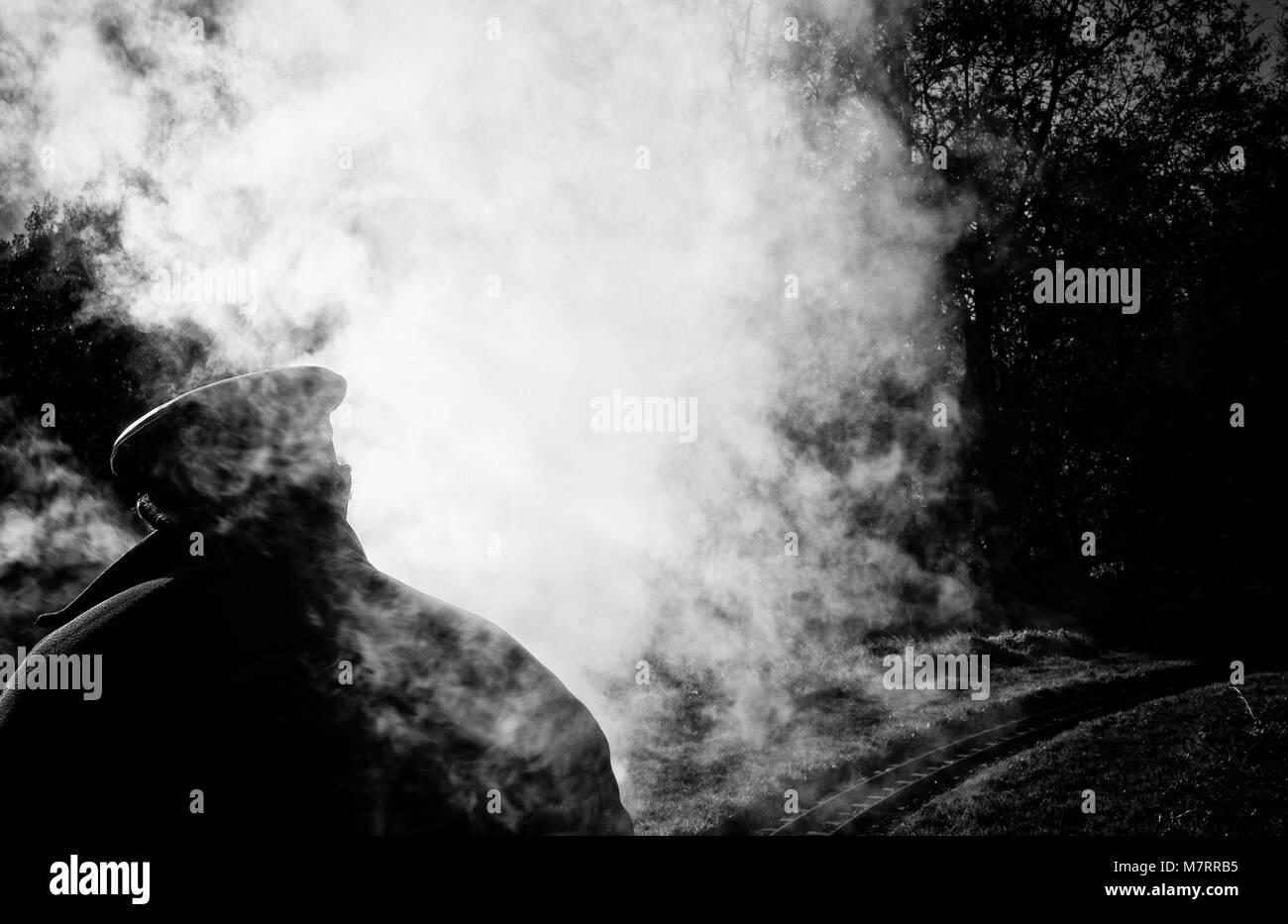 Steam Train Driver - Stock Image